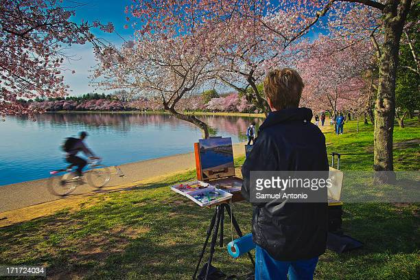 Painter depicts a scene of the cherry blossoms along the Tidal Basin in Washington, DC in the spring 2013. Cold Temperature, Beginnings, Lifestyles,...