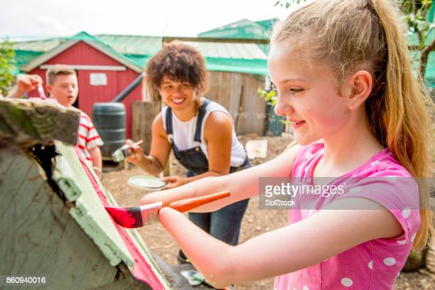painting a chicken coop at the farm - amputee stock pictures, royalty-free photos & images
