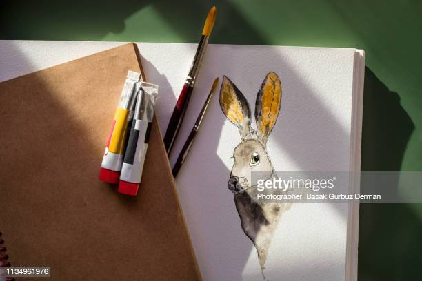 painting a rabbit in ink and watercolor - easter bunny stock pictures, royalty-free photos & images