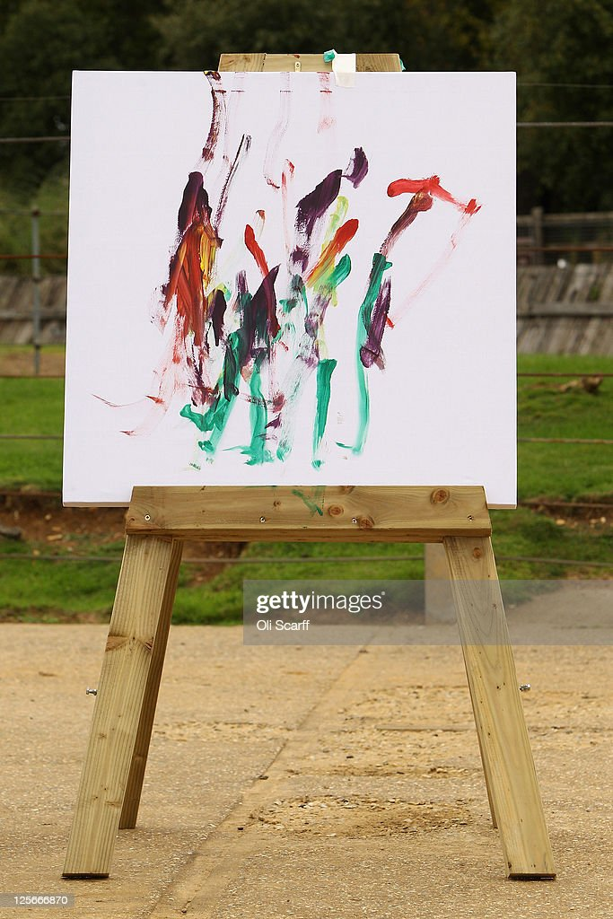 A painting created by Karishma, a 13 year old female Asian elephant, is stands in her enclosure at ZSL Whipsnade Zoo on September 20, 2011 in Dunstable, England. A selection of Karishma's artwork will go on display at the Zoo this weekend to celebrate Elephant Appreciation Day.