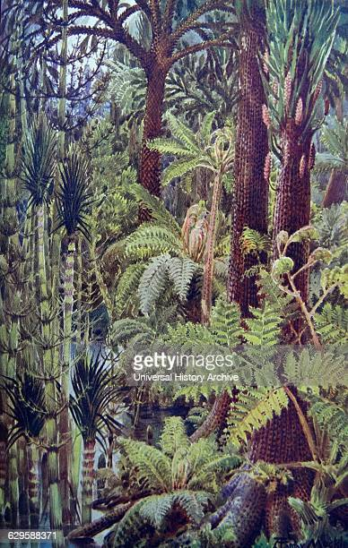 Painting depicting the gigantic vegetation of the carboniferous age