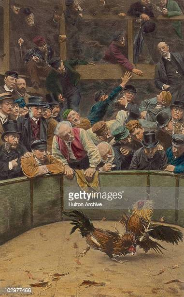 Painting entitled 'The Cockfight' by Remy Cogghe circa 1889 The painting depicts a crowd of men urging on two cockerels fighting in a ring