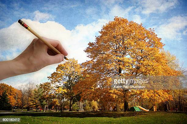 Painting Golden Autumn in a Park