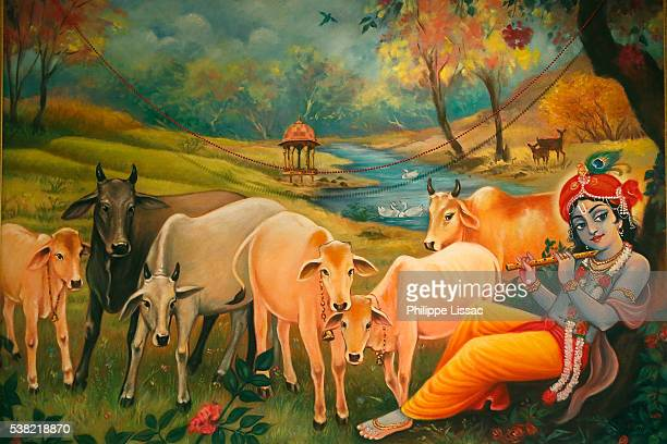 painting in the london iskcon hindu temple : krishna as a cow herder - lord krishna stock pictures, royalty-free photos & images