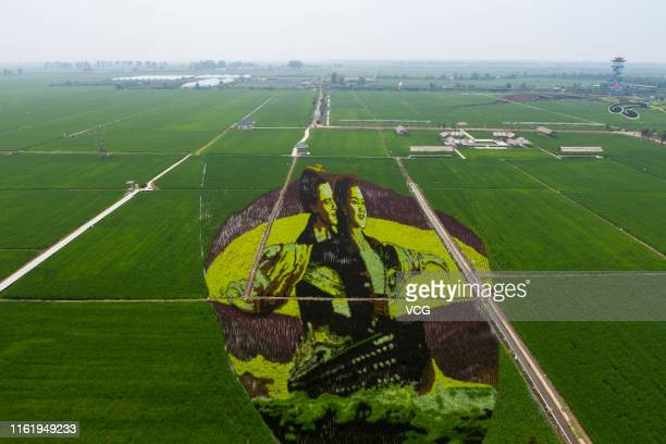 Painting showing Jack and Rose from the movie 'Titanic' is displayed on a rice field, which attracts tourists, at an agriculture industrial park on...