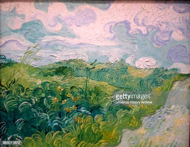 Painting titled 'Green Wheat Fields Auvers' by Vincent van Gogh a Dutch PostImpressionist painter Dated 19th Century