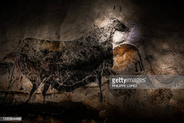 Paintings are seen in the Lascaux cave replica on May 12, 2012 in Montignac, during preparations for its reopening following a closure as part of...