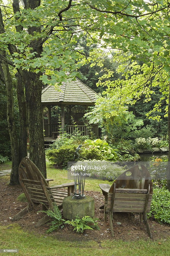 Pair Of Adirondack Chairs Under Maple Tree High Res Stock