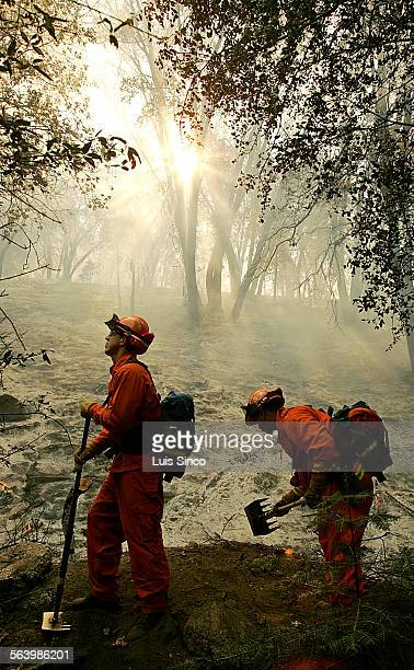 A pair of California Department of Corrections fire crew clears brush from a Palomar Mountain burn area on Wednesday Oct 24 2007