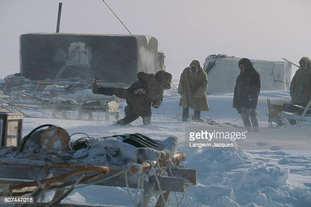 A pair of Dolgan hunters wrestle in their camp near Syndassko Russia after returning from a reindeer hunt The Dolgans traditionally a nomadic people...