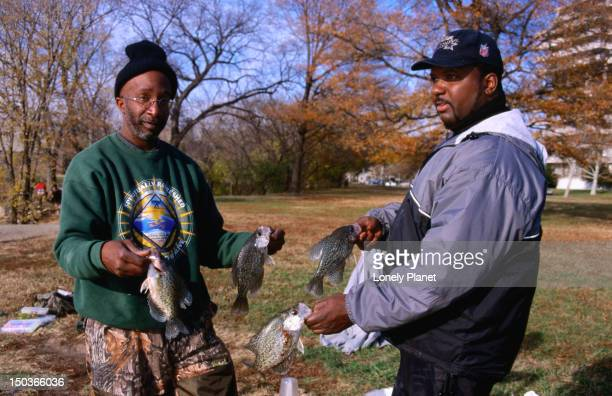 a pair of fishermen holding their catch of crappies, taken from the potomac river. - crappie stock pictures, royalty-free photos & images