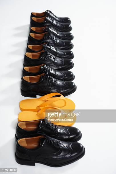 Pair of flip flops between wingtip shoes