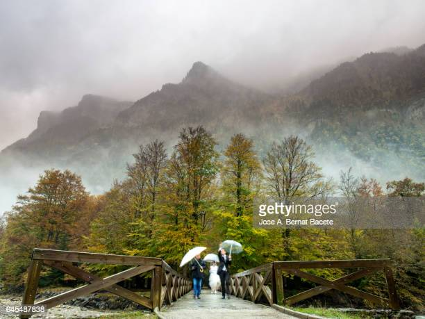 Pair of grooms, with wedding dress, walking on a bridge of wood that crosses a forest of beeches  in autumn, in Ordesa national park.