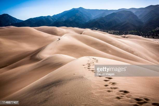 a pair of hikers treks along the dunes at great sand dunes np. - great sand dunes national park stock pictures, royalty-free photos & images