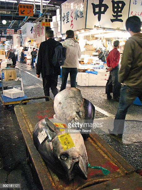 CONTENT] A pair of large tuna heads rests on a hand cart in an aisle of the fish market as people walk by