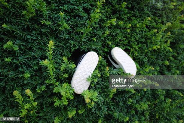 pair of small shoes sticks out from green bush - curiosity stock pictures, royalty-free photos & images