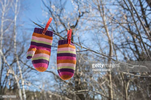 pair of striped mittens pegged to branch - mitten stock pictures, royalty-free photos & images