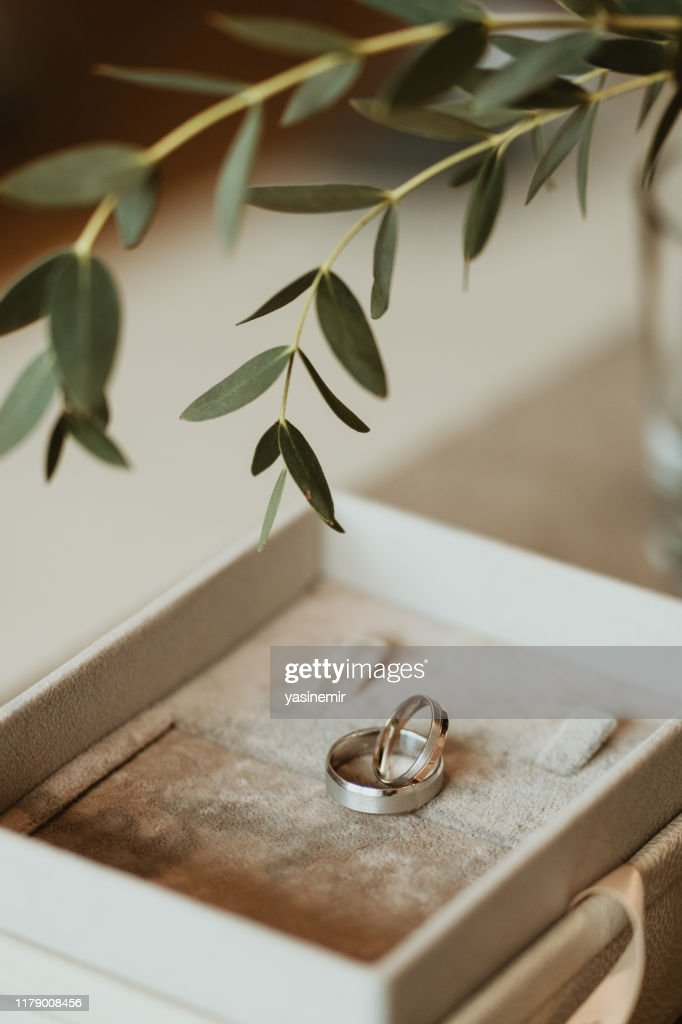 A pair of wedding rings in a box with a beautiful atmosphere. : Stock Photo