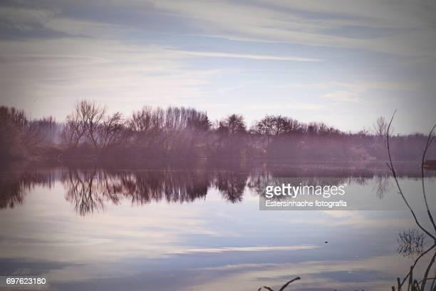 paisaje con reflejo en el río - salamanca imagens e fotografias de stock
