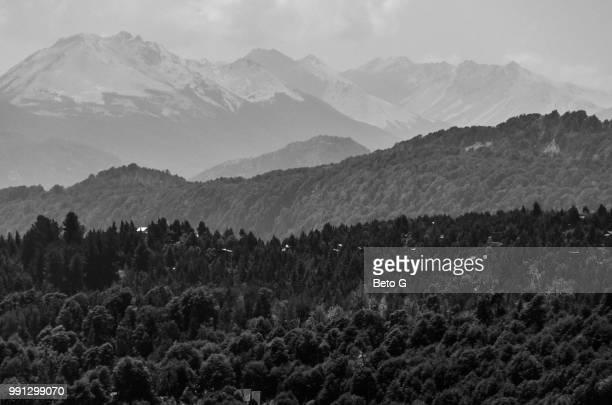 paisaje en blanco y negro - blanco y negro ストックフォトと画像