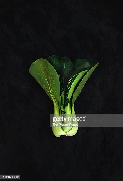 Pak choi on slate stone black background, top view.