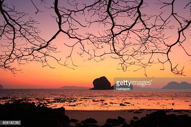 pak meang beach, sikao, trang. - provinz chonburi stock-fotos und bilder