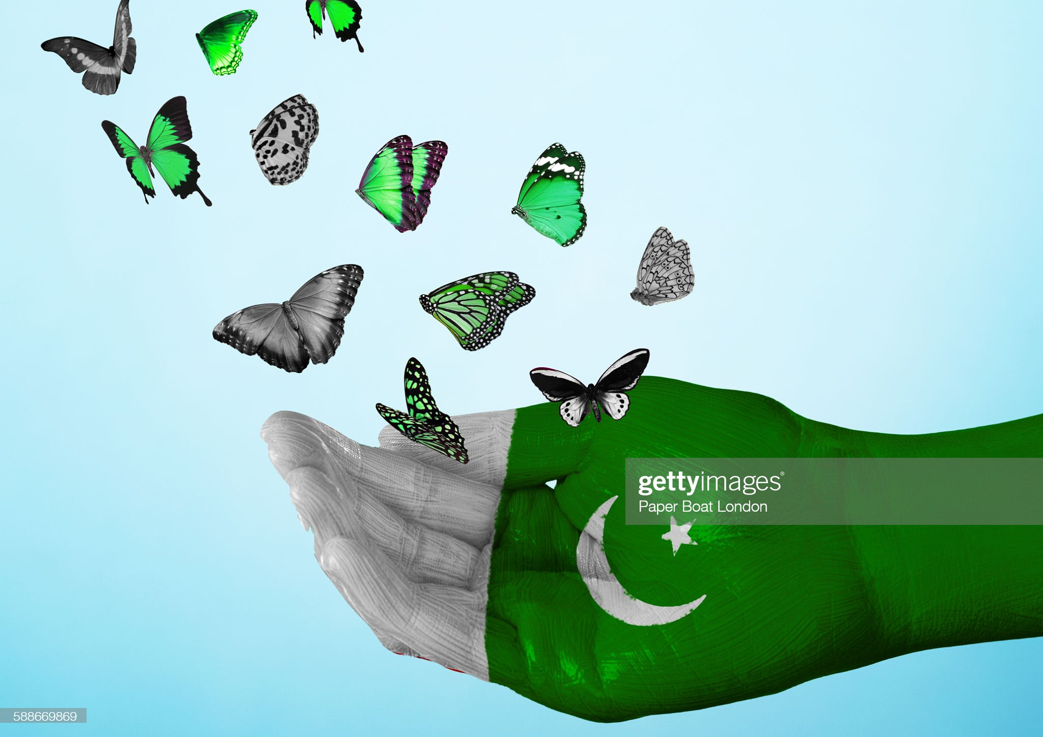 pakistan flag painted on hand with butterflies : Stock Photo