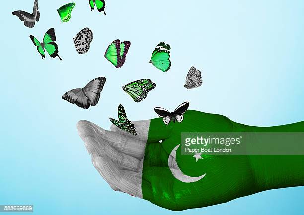 pakistan flag painted on hand with butterflies - pakistani flag stock photos and pictures