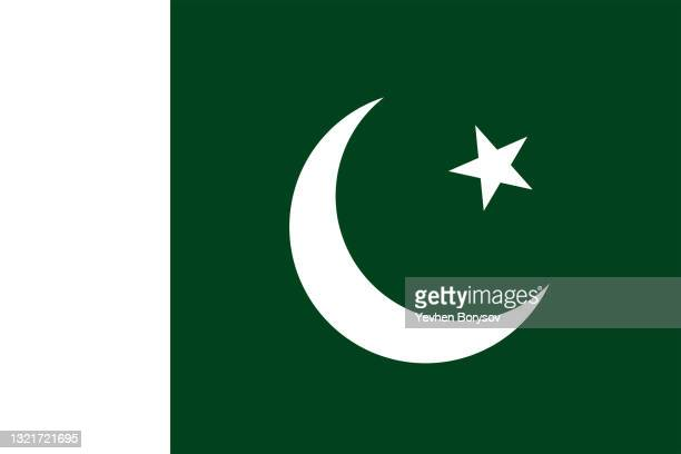 pakistan flag simple illustration for independence day or election - pakistan stock pictures, royalty-free photos & images