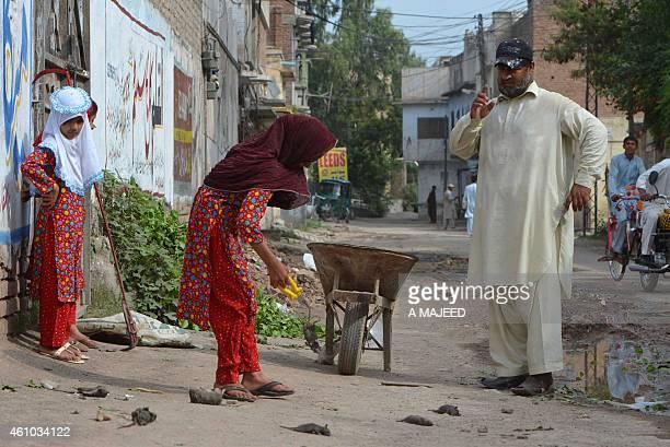 PakistanenvironmenthealthanimalratoffbeatFEATURE by Sajjad TARAKZAI This photograph taken on May 18 2014 shows Pakistani resident Naseer Ahmad...