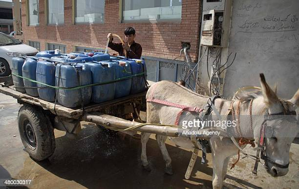 Pakistani boy fills water canes loaded on a donkey cart from a water tap March 22 in Islamabad Pakistan on the eve of World Water Day According to...