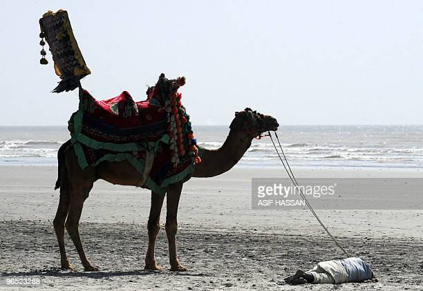 A Pakistani camel rider takes a nap as he holds onto the reins of the camel on the famous Sea View Beach of Karachi on February 9 2010 The city's...