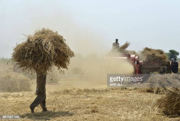 TOPSHOT Pakistani farmers use a threshing machine to refine wheat during harvesting in a field on the outskirts of Lahore on April 25 2018
