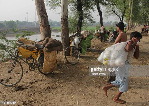 Pakistani fruit traders carry washed melons from the water canal and deliver it to Lahore market