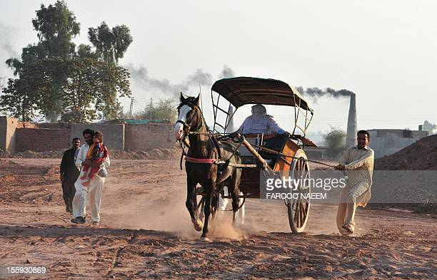 A Pakistani man pulls the rope on a Tanga horsedrawn cart after he lost control of it on the outskirts of Islamabad on November 9 2012 Tanga a...