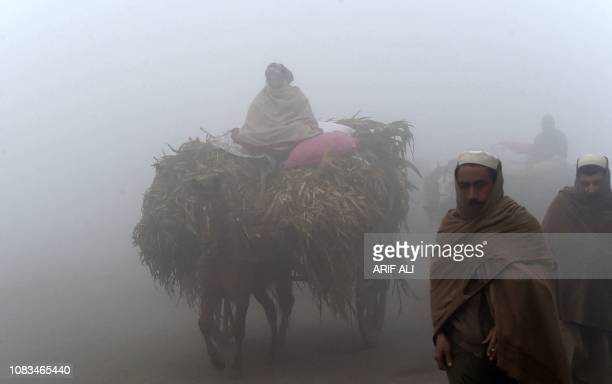 A Pakistani man rides on his loaded horsecart on a road amid heavy fog and smog conditions in Lahore on January 17 2019 Smog levels spike during...