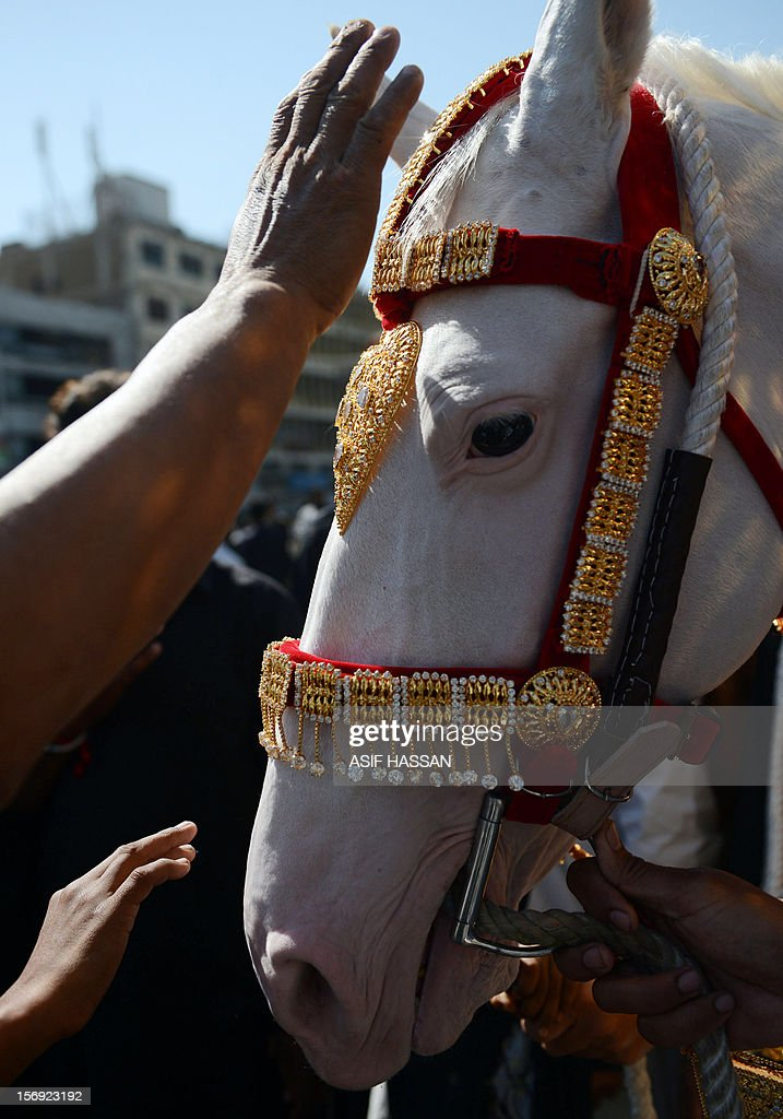 Pakistani Shiite Muslim mourners touch a horse, symbolising the one used by seventh-century Muslim saint Imam Hussain in battle, during an Ashura procession in Karachi on November 25, 2012. A bomb attack on a Shiite Muslim procession killed five mourners and wounded more than 80 in northwest Pakistan on November 25 as Shiites marked their holiest day Ashura, officials said. AFP PHOTO/Asif HASSAN