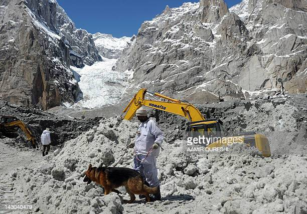 A Pakistani soldier works with a sniffer dog to search for avalanche victims during an ongoing operation at Gayari camp near the Siachen glacier on...