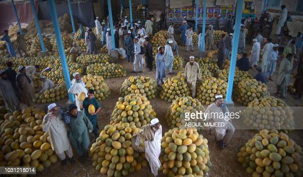 Pakistani vendors gather around of canary melon piles at a fruit market in Peshawar on September 11 2018
