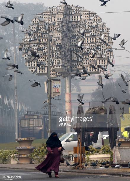 A Pakistani woman walks on a street as pigeons fly overhead during a cold and foggy morning in Lahore on January 4 2019