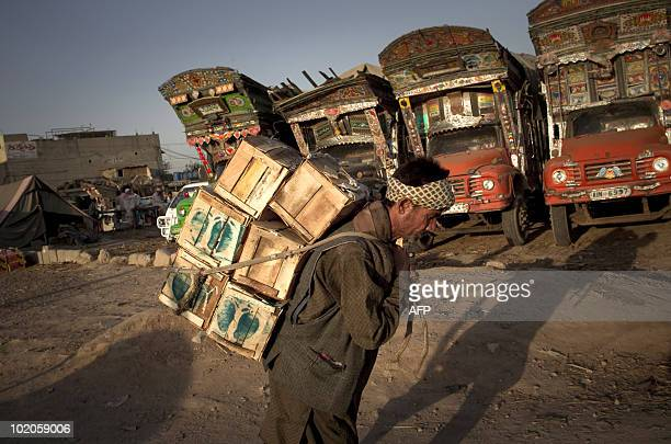 A Pakistani worker carries boxes of mangoes at a fruit market in Islamabad on June 14 2010 Pakistan's economy grew by 41 percent in the financial...