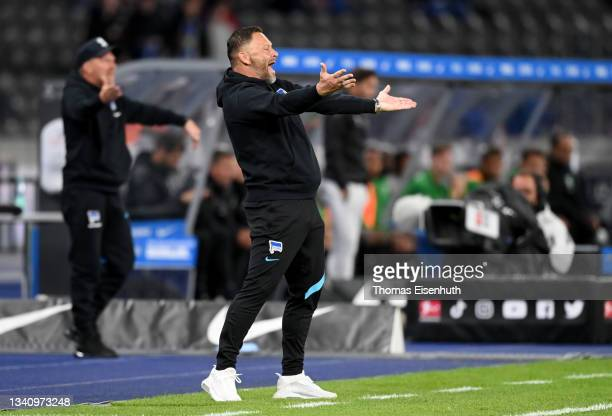 Pal Dardai, Head Coach of Hertha Berlin reacts during the Bundesliga match between Hertha BSC and SpVgg Greuther Fürth at Olympiastadion on September...