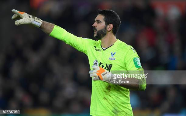 Palace goalkeeper Julian Speroni in action during the Premier League match between Swansea City and Crystal Palace at Liberty Stadium on December 23...