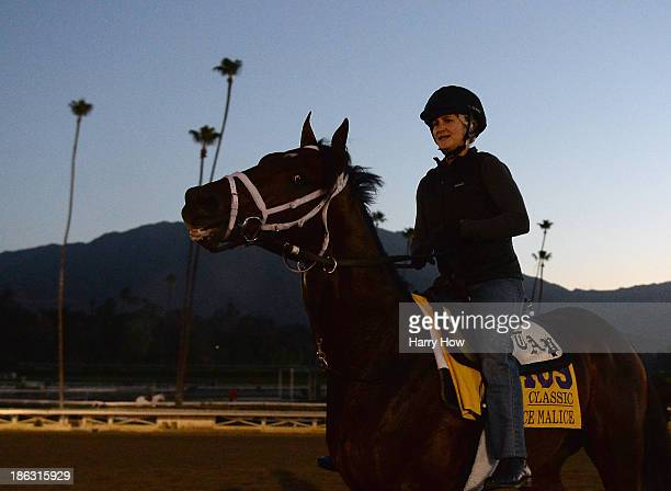 Palace Malice and a rider return to the stables after training in preparation for the Breeders' Cup World Championships at Santa Anita Park on...