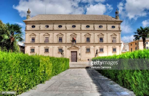 palace of vázquez de molina in úbeda, spain - carmona fotografías e imágenes de stock