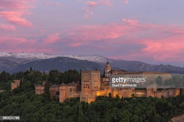 Palace surrounded by trees at sunset, Alhambra, Spain