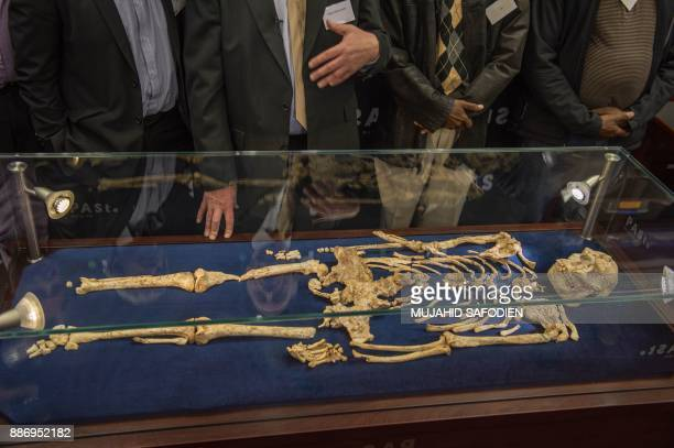 Palaeoanthropologist Professor Ron Clarke unveiled for the first time to the public the Little Foot fossilised hominid skeleton at the University of...