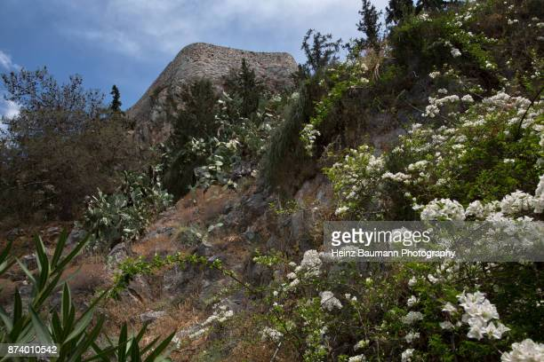 Palamidi Fortress amongst wild cactus and flowers in Nafplio, Greece