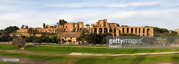 colle palatino e il foro romano (xxxl - circo massimo foto e immagini stock