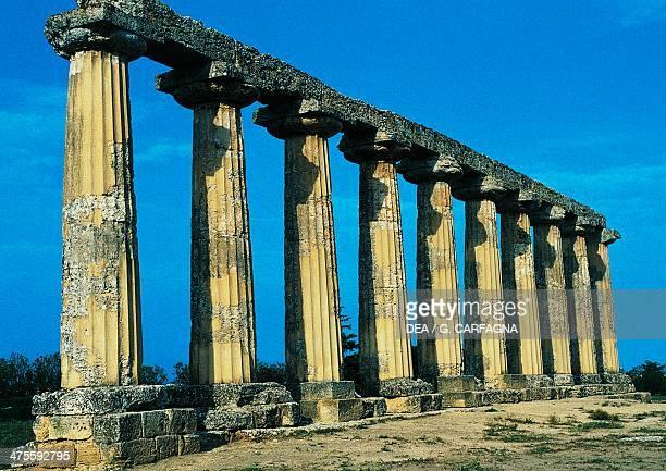 Palatine Tables ruins of a Doric temple Metaponto Basilicata Italy Greek civilisation 6th century BC